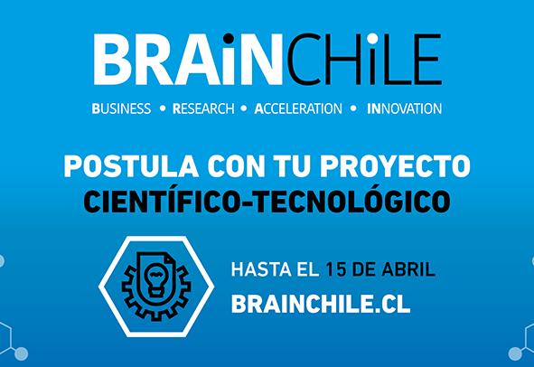 brain chile 2019